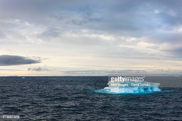 icebergs on the waters of the weddell sea in the southern ocean. - weddell sea stock photos and pictures
