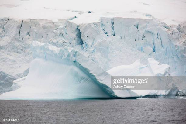 icebergs oof curverville island on the antarctic peninsular, - pack ice stock pictures, royalty-free photos & images
