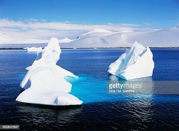 Icebergs Paradise Harbour Antarctic Peninsula Antarctica