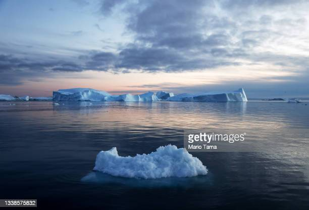 Icebergs which calved from the Sermeq Kujalleq glacier float in the Ilulissat Icefjord on September 05, 2021 in Ilulissat, Greenland. 2021 will mark...