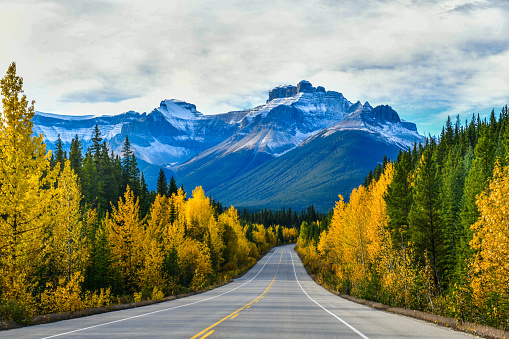 Icefield Parkway in Autumn Jasper National park,Canada 948804856