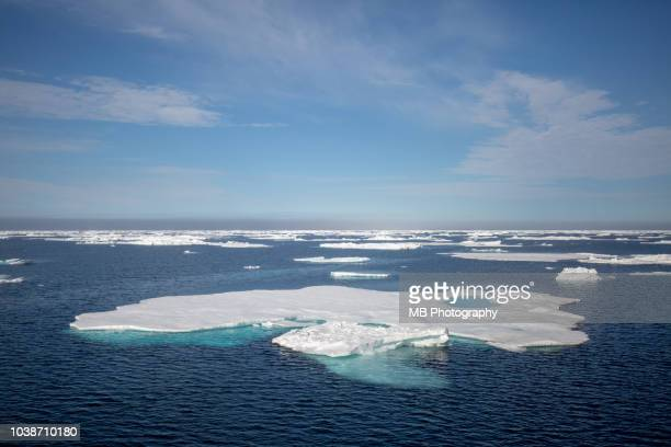 icefloe in greenland - drift ice stock pictures, royalty-free photos & images