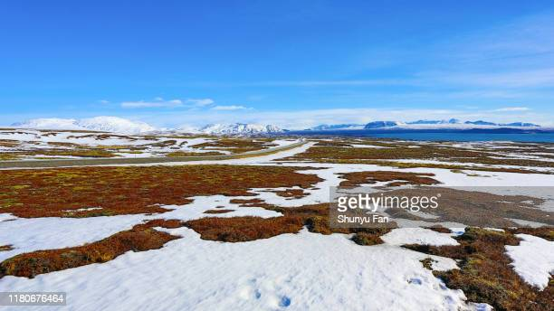 iceland landscape - tundra stock pictures, royalty-free photos & images