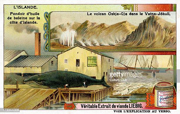 Melting whale oil on the coast Illustration of 1911 Also shown Askja volcano in Vatnajökull glacier Liebig Collectible Card