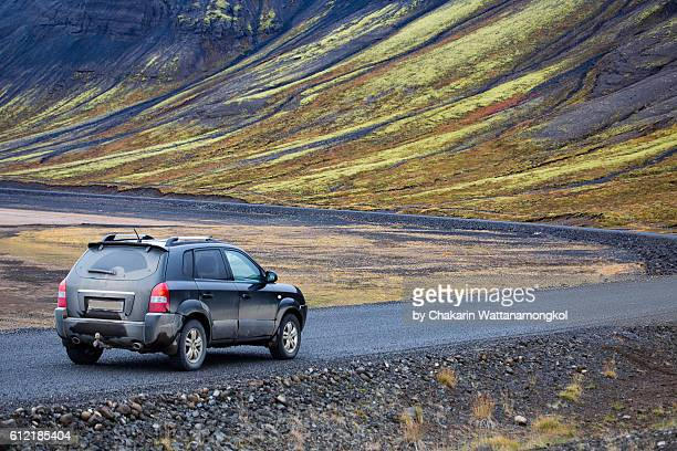 Iceland Roadside Scenery (Autumn)