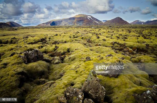 iceland, south of iceland, moss-grown volcanic rock - lava plain stock pictures, royalty-free photos & images