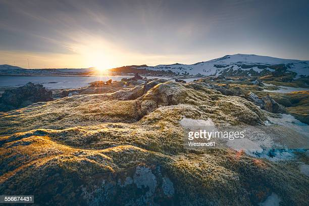 Iceland, Sudurland, coast in the morning