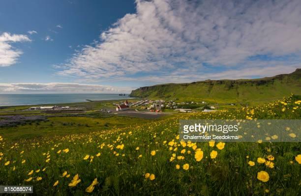 Iceland, Sudurland Region, Vik in Summer