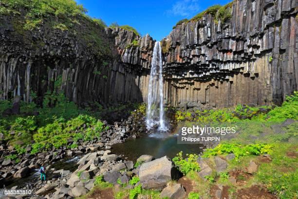 iceland, sudurland. svartifoss waterfall. - austurland stock-fotos und bilder