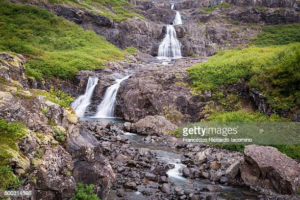 Iceland, westfijords landscape with waterfalls and green bushes
