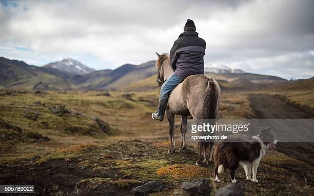 Icelandic Cowboy