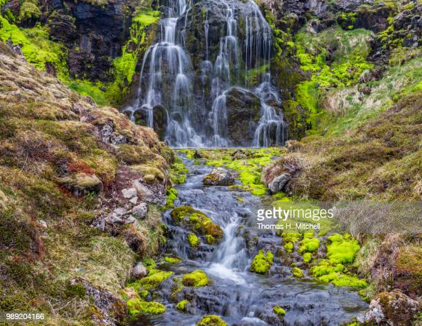iceland-westfjords-green moss falls - brook mitchell stock pictures, royalty-free photos & images