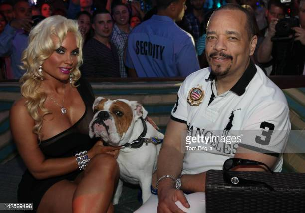 IceT and Nicole Coco Austin along with their bulldog Spartacus host The Pool After Dark at Harrah's Atlantic City on Saturday April 7 2012 In...
