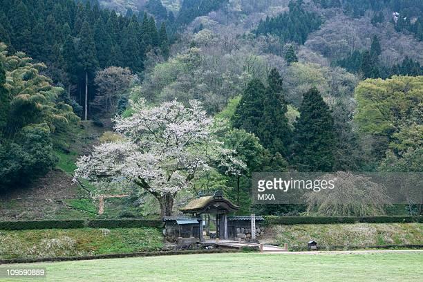 Ichijodani Asakura Family Historic Ruins, Fukui, Fukui, Japan