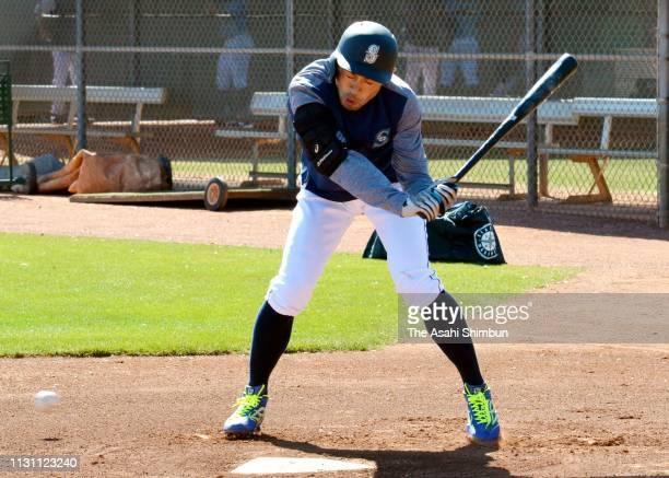 Ichiro Suzuki of the Seattle Mariners is hit by a pitch during the Seattle Mariners Spring Training on February 20 2019 in Peoria Arizona