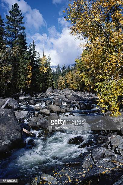 icicle river w/ fall colors, leavenworth, wa - leavenworth washington stock photos and pictures