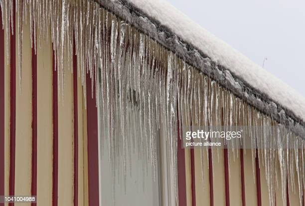 Icicles hanging from a roof in Schierke 16 January 2016 PhotoMatthias Bein/dpa | usage worldwide
