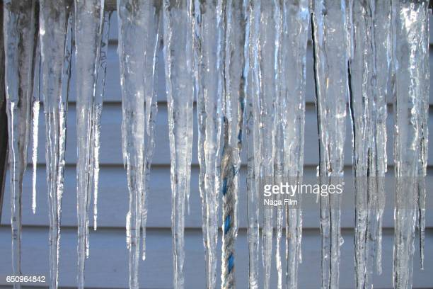 Icicles on a cold day.