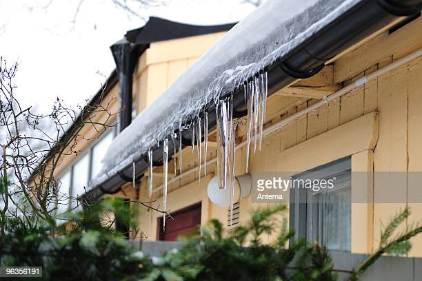 icicles - icicle stock pictures, royalty-free photos & images