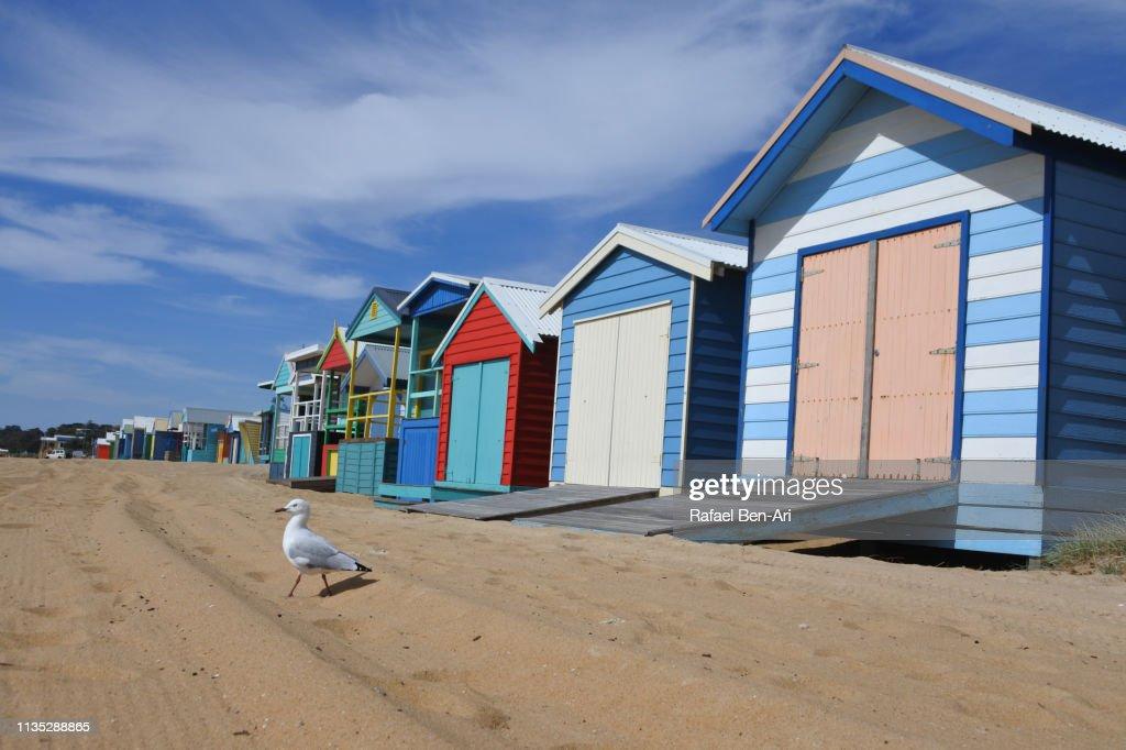 Iconic Bathing Boxes of the Mornington Peninsula Victoria Australia : Stock Photo