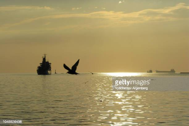 iconic manila bay sunset - argenberg stock pictures, royalty-free photos & images