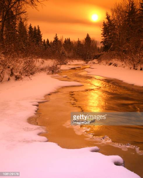 icy creek im winter - kananaskis stock-fotos und bilder