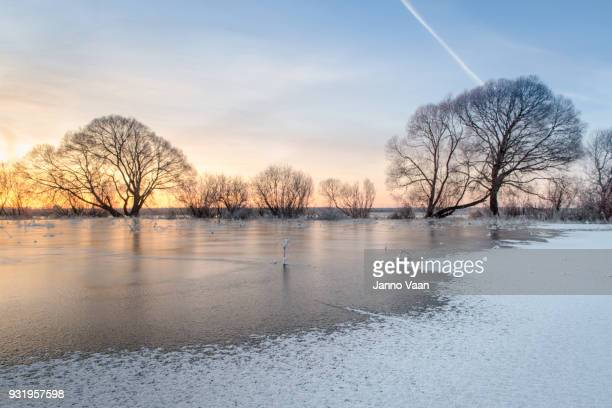icy terrain - estonia stock pictures, royalty-free photos & images