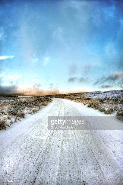 icy tundra - scott macbride stock pictures, royalty-free photos & images