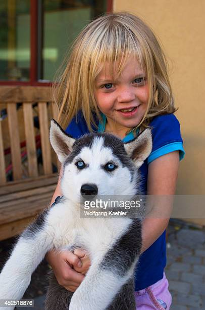 USA Idaho Near Sandpoint Schweitzer Mountain Resort Girl With Siberian Husky Puppy Model Released