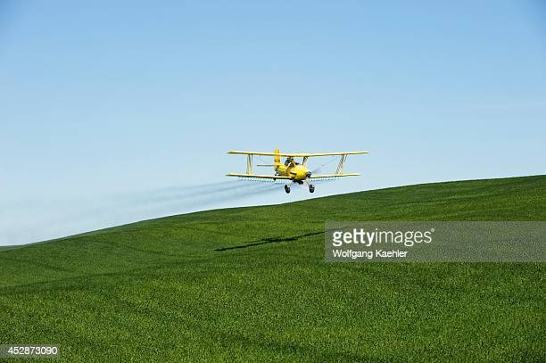 USA Idaho Palouse Area Near Moscow Biplane Cropdusting Wheat Field With Pesticide