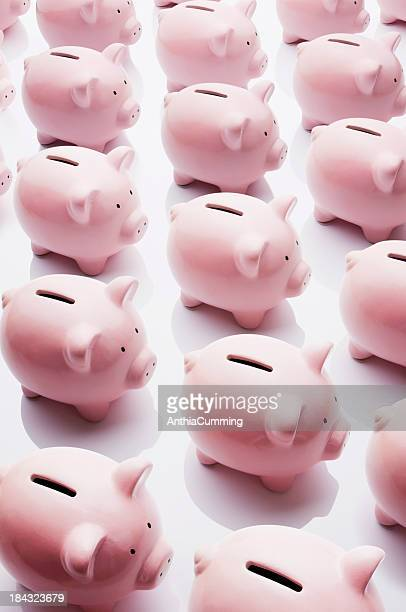 Identical pink ceramic piggy banks standing in rows