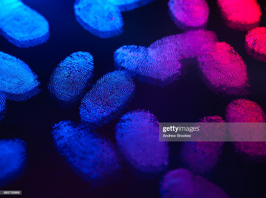 Identity, human finger prints shown up using light : Stock Photo