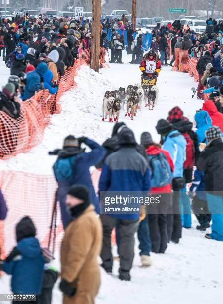 Iditarod champion Mitch Seavey at the start of the 2015 Iditarod Sled Dog Race in Fairbanks Alaska 09 March 2015 Photo Scott Chesney/dpa | usage...