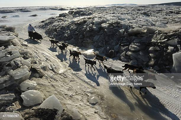Iditarod musher Martin Buser from Big Lake AK comes in off the ice through a cut in a pile of ice pushed up near the shore in Koyuk during the 2014...