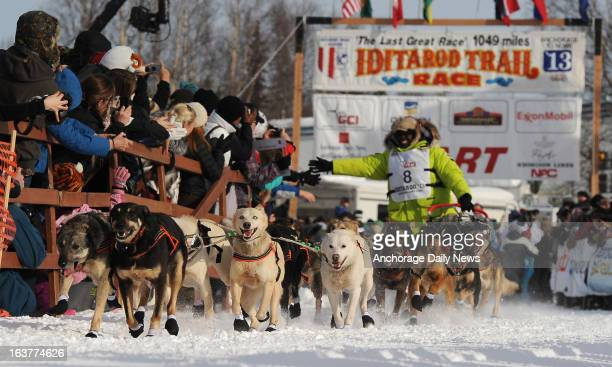 Iditarod musher Newton Marshall from St Anne Jamaica and his sled dog team leave the start line of the 2013 Iditarod Sled Dog Race in Willow Alaska...