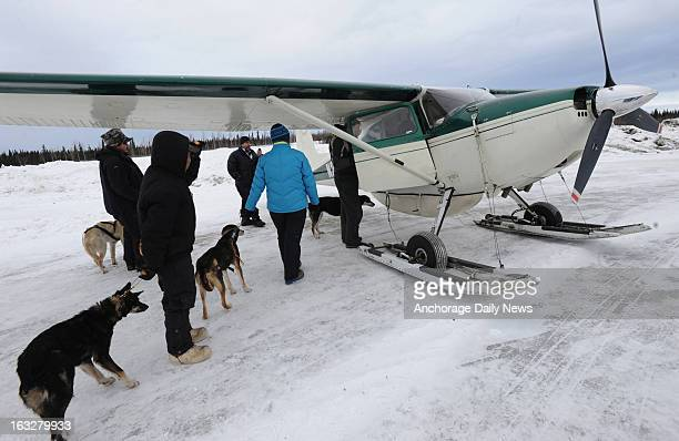 Iditarod volunteers load dropped dogs into the plane of Iditarod Air Force pilot Danny Davidson at Nikolai Alaska airport on Wednesday March 6 during...
