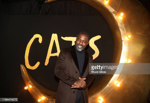 Idris Elba poses at the World Premiere of the new film Cats based on the Andrew Lloyd Webber musical at Alice Tully Hall Lincoln Center on December...