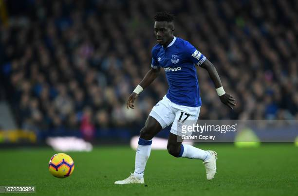 Idrissa Gueye of Everton during the Premier League match between Everton FC and Cardiff City at Goodison Park on November 24 2018 in Liverpool United...
