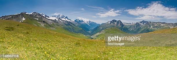 Prairie Alpine idyllique montagnes