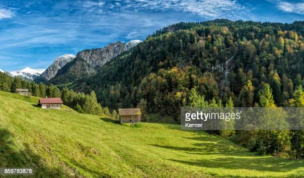 idyllische und wunderschöne landschaft im herbst - laubbaum stock-fotos und bilder
