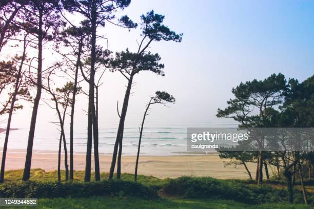 idyllic beach at sunset - paysage marin photos et images de collection