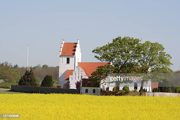 idyllic country side parish church behind oilseed rape field - danish culture stock pictures, royalty-free photos & images