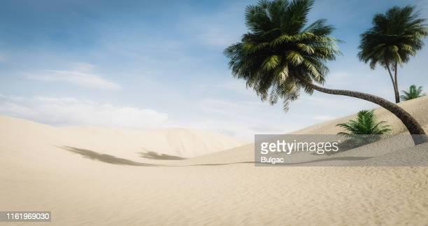 idyllic desert landscape - duna foto e immagini stock