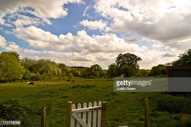 idyllic english pastures with blue sky - picket stock pictures, royalty-free photos & images