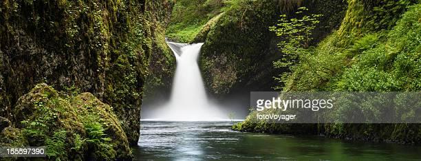 Idyllic forest waterfall Punch Bowl Falls Oregon