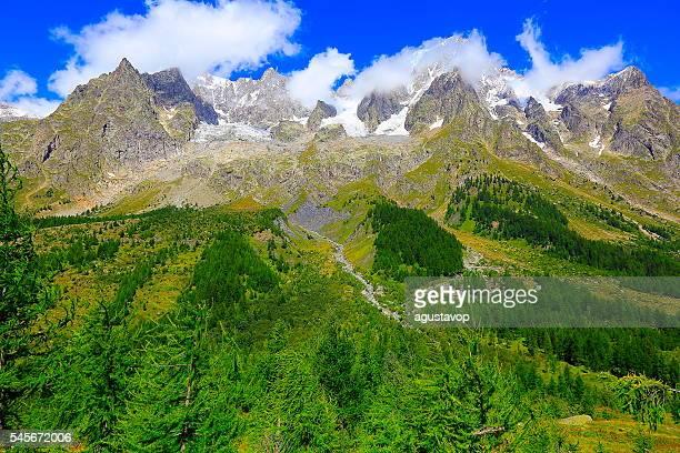 Idyllic Grandes Jorasses alpine landscape, pine trees woods, Pennines