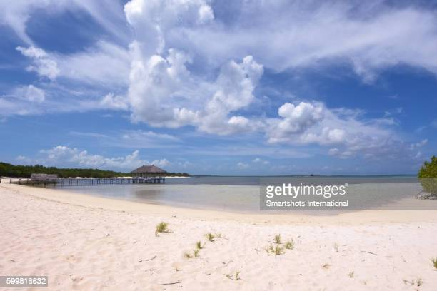 Idyllic image of the Caribbean with a pristine beach, turquoise waters and white sand