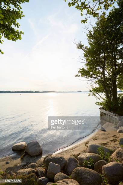 idyllic lake with meadow, beach and trees against sky and sunlight - lakeshore stock pictures, royalty-free photos & images