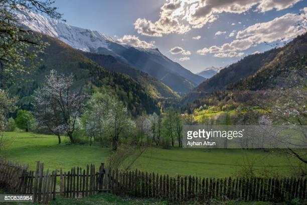 Idyllic landscape at spring near Mestia town, Svaneti region,Georgia