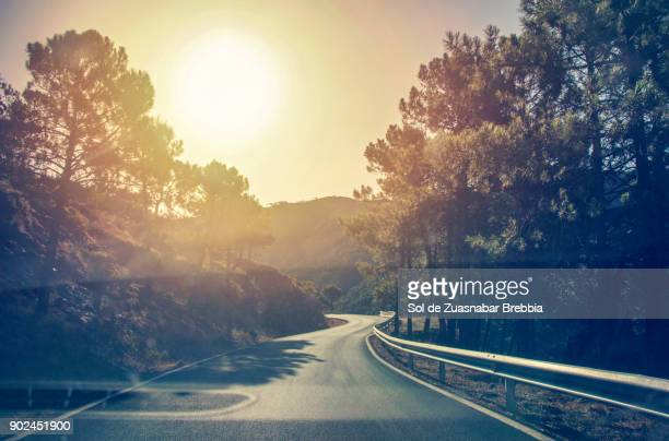 idyllic landscape of a mountain road on a magical sunny day - 週末の予定 ストックフォトと画像
